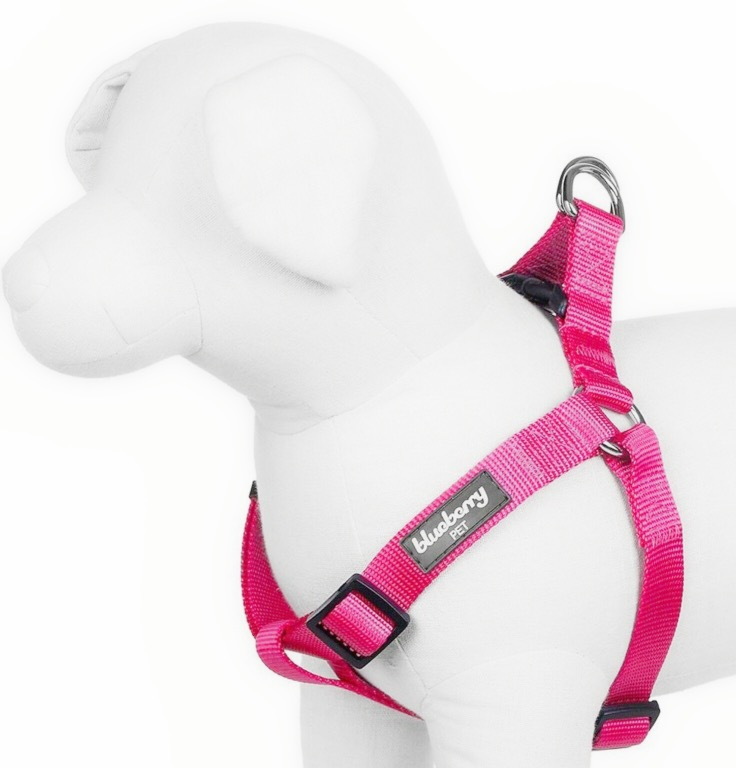 step in harness for pugs1