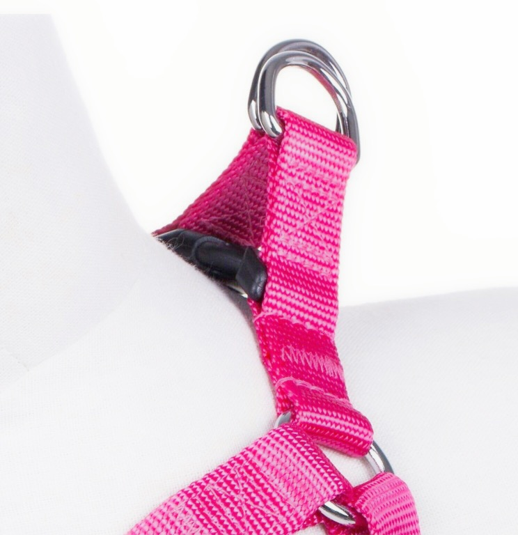 step in harness for pugs2