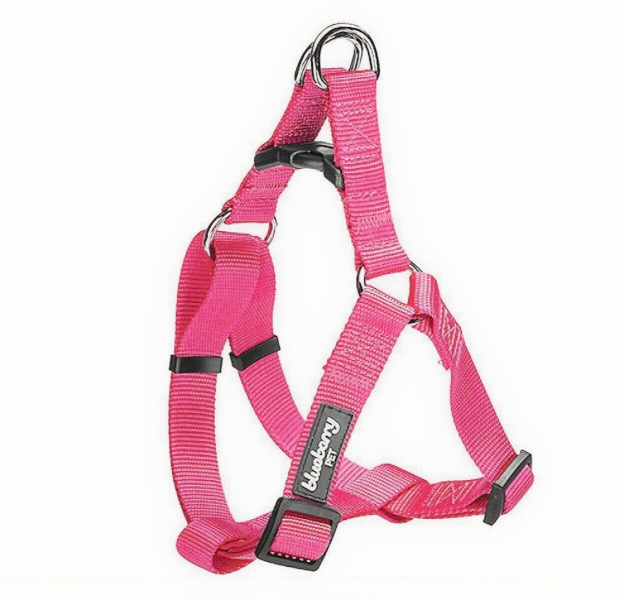 step in harness for pugs3